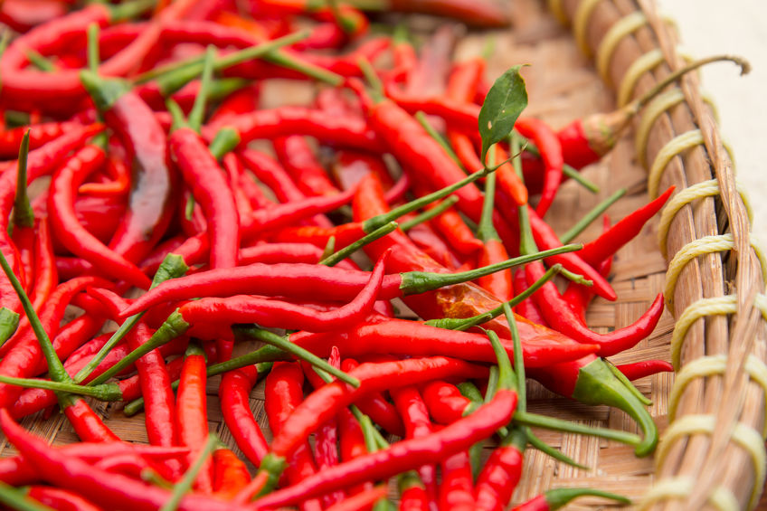 Capsaicin for joint pain