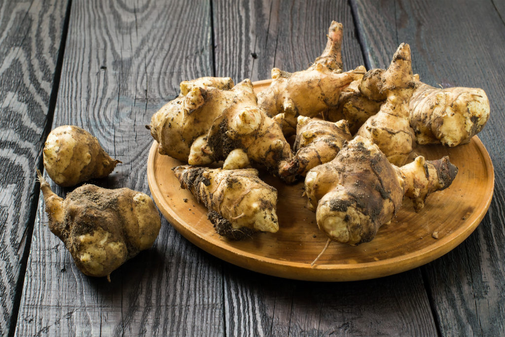 fresh organic jerusalem artichoke (helianthus tuberosus) with soil particles on a round wooden board