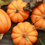 Pumpkins and squash for fall foods