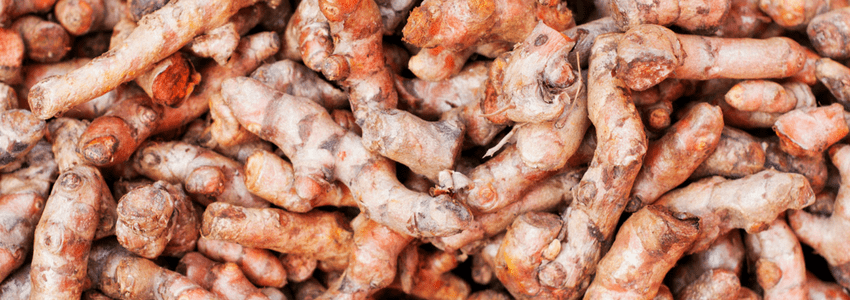 bunches of turmeric curumin roots