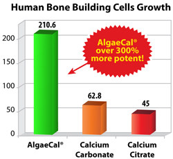 AlgaeCal Bone Building Cells Study