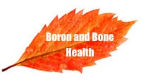 algaecal boron and osteoporosis