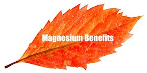 Organic calcium supplement magnesium
