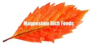 organic calcium supplement magnesium rich foods