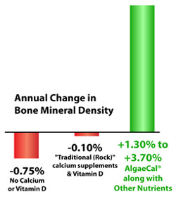 AlgaeCal Increases Bone Mineral Density
