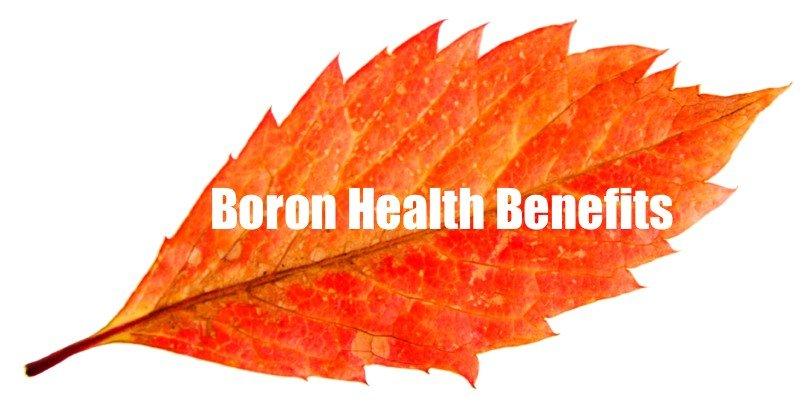algaecal plus calcium supplements boron