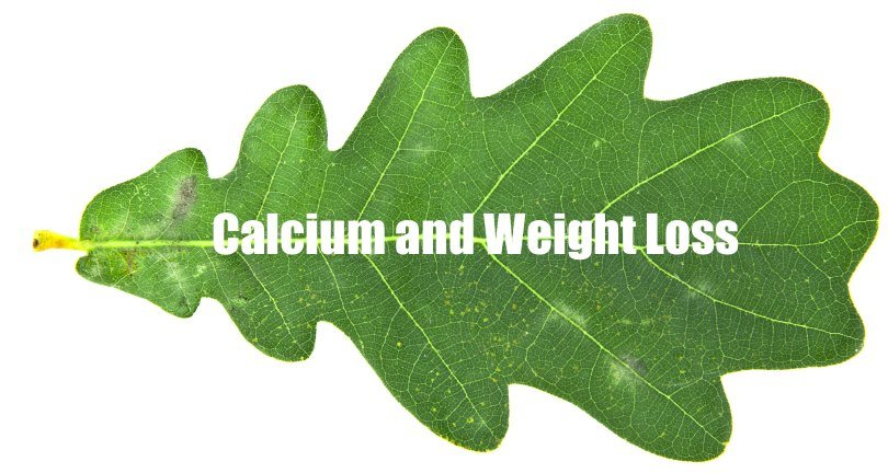 algaecal organic calcium and weight loss