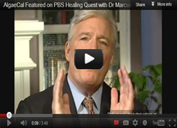 Dr Marcus Laux Features AlgaeCal on PBS