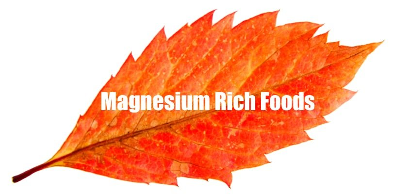 Best absorbable calcium and magnesium rich foods