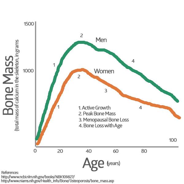 Preventative Care - Peak Bone Mass Graph