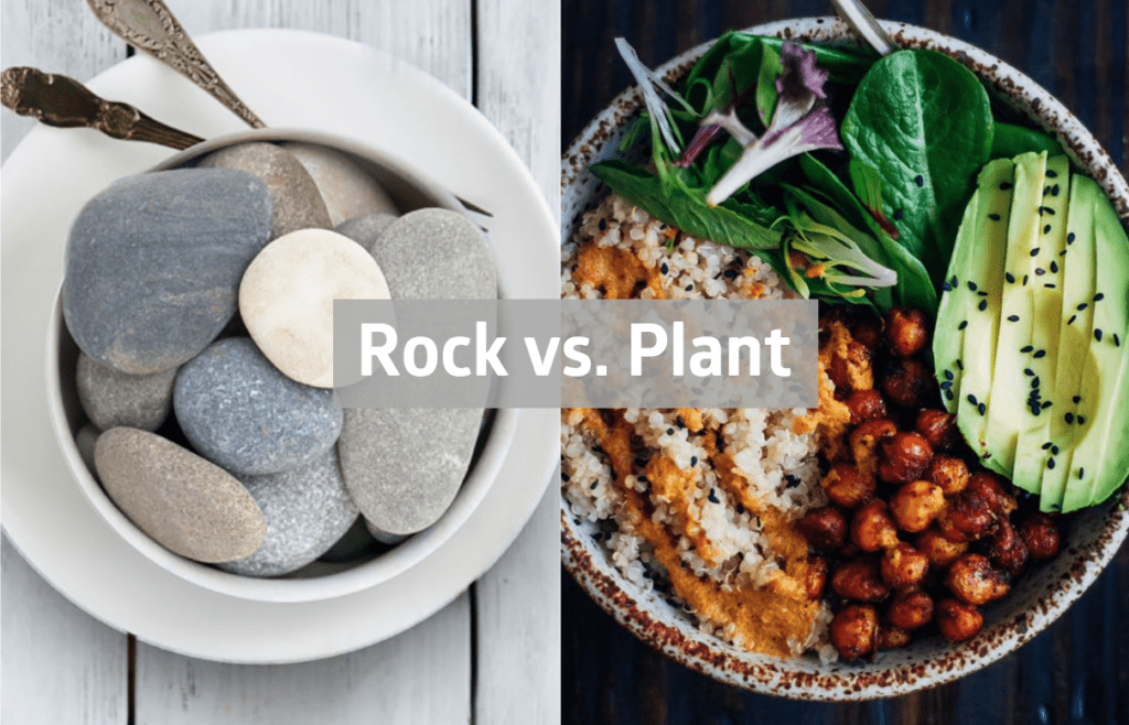rock vs plant based calcium