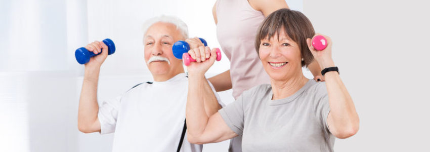 easy chair exercises for seniors