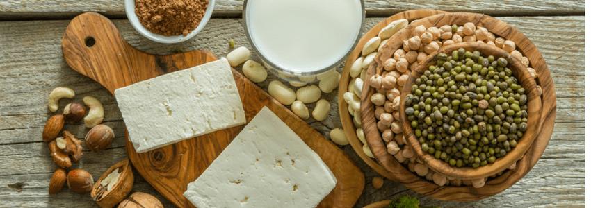 protein and bone health