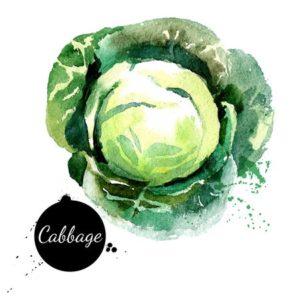 Calcium in Cabbage