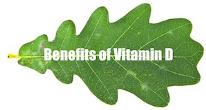 plant calcium vitamin d benefits