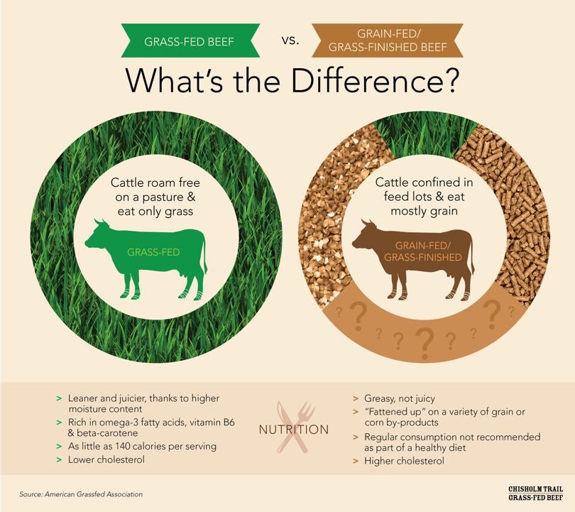 grass feb beef vs grain fed beef