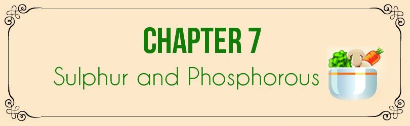 algaecal vegetarian chapter 7