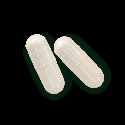 AlgaeCal Pills