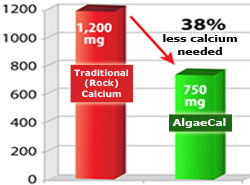 active absorbable Algaecal calcium more effective than Rock Calcium at lower doses