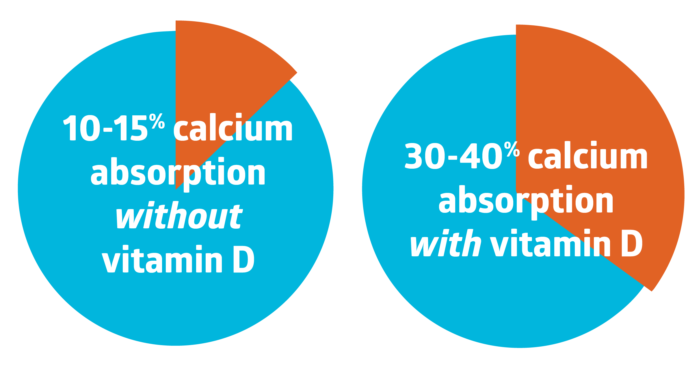 10-15% Calcium absorption without Vitamin D; 100% calcium absorption with Vitamin D