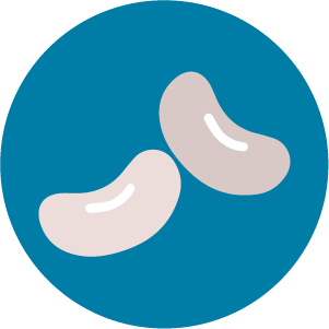 Cannellini beans icon