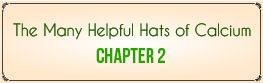 Chapter 2: The Many Helpful Hats of Calcium