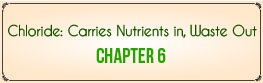 Chapter 6: Chloride Carries Nutrients In, Waste Out