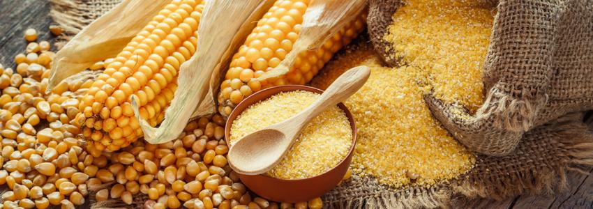 Lara's Quick Gluten-free Corn Bread