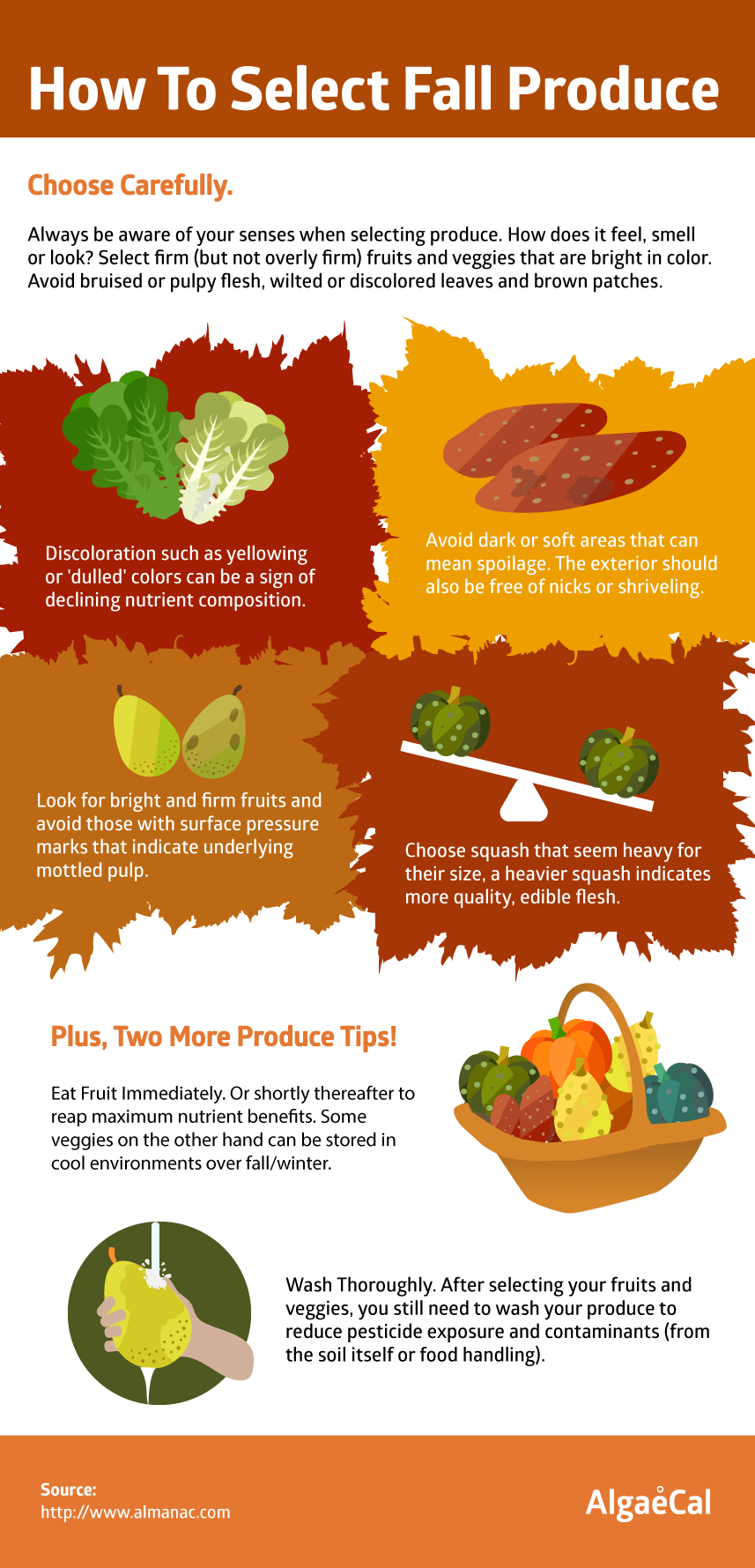 guide on how to select fall produce
