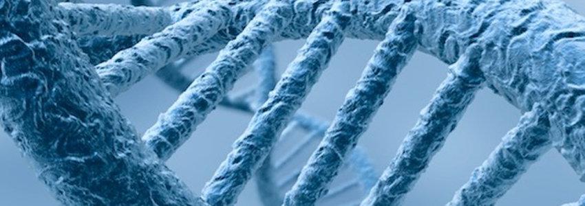 DNA zoomed in