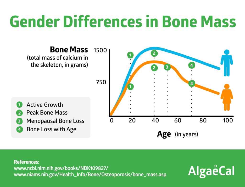 gender differences in bone mass