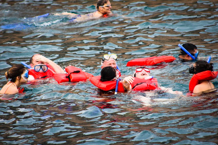group snorkeling