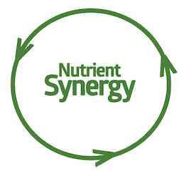 nutrient synergy