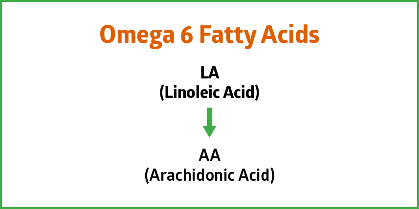 Omega 6 Fatty Acids