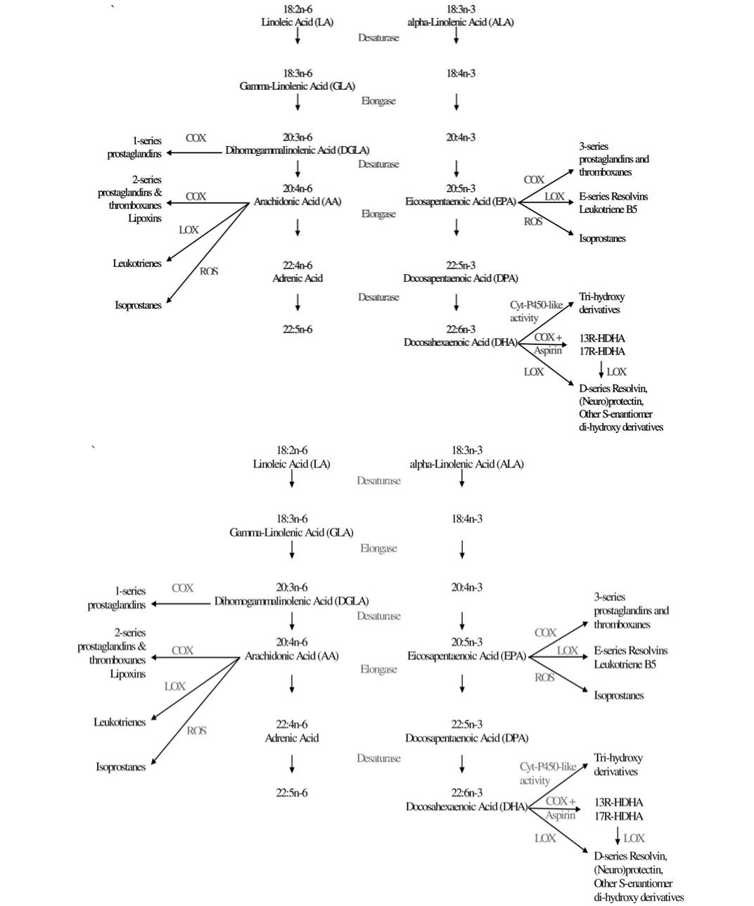 omega3diagram