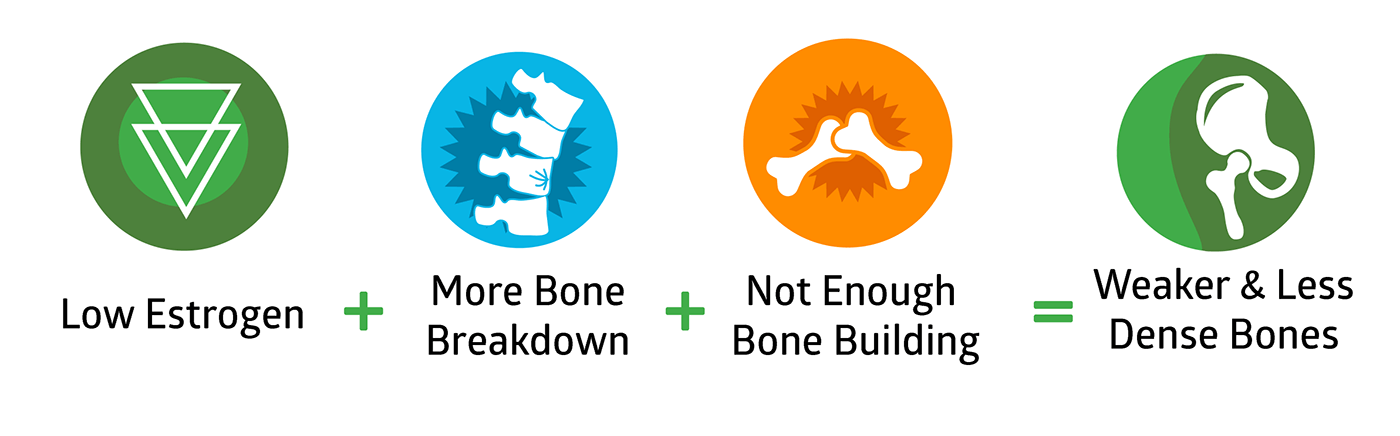 Low Estrogen + More Bone Breakdown + Not Enough Bone Building = Weaker & Less Dense Bones