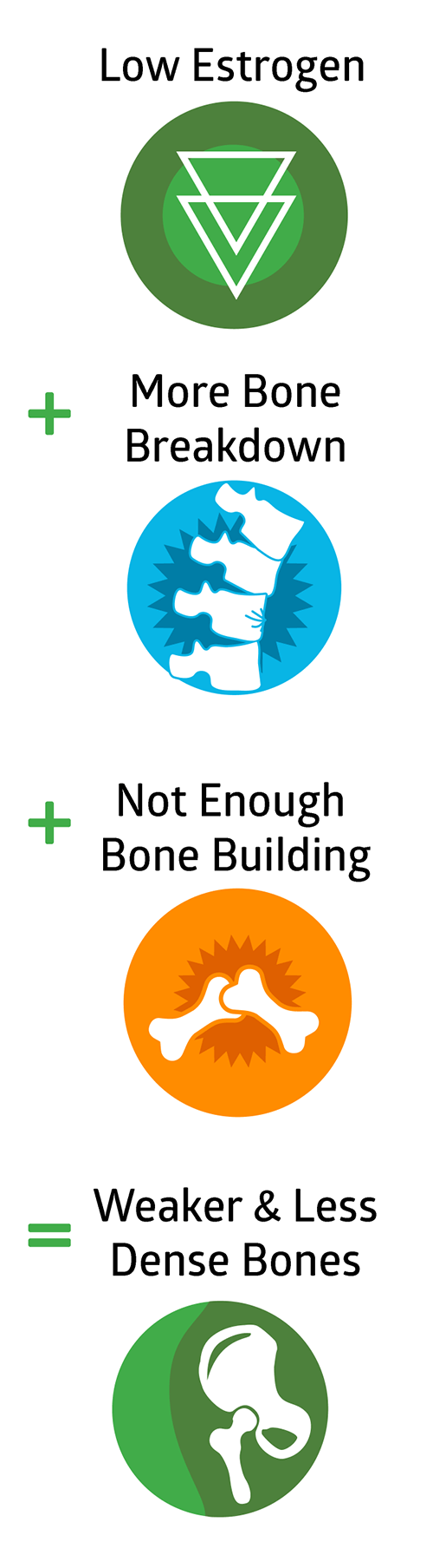 Low Estrogen + More Bone Breakdown + Not Enough Bone Building = Weaker & Less Dense Bones