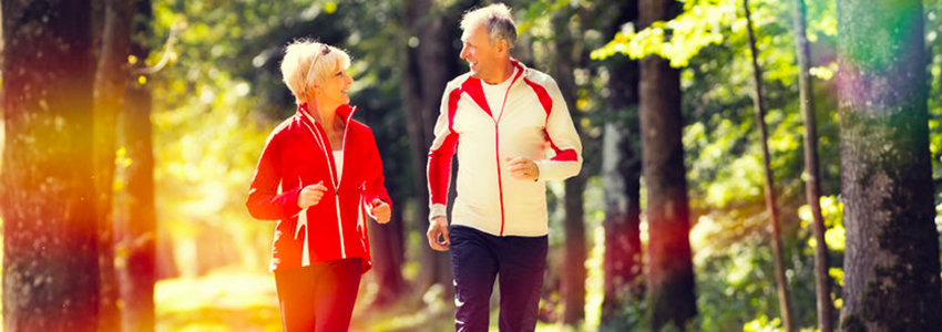 osteoporosis and digestion