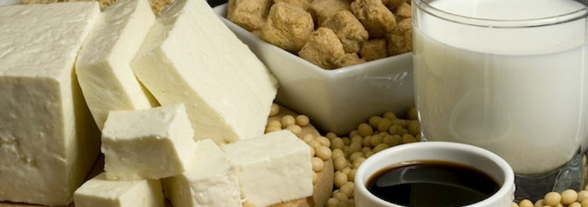 Tofu soybeans and milk